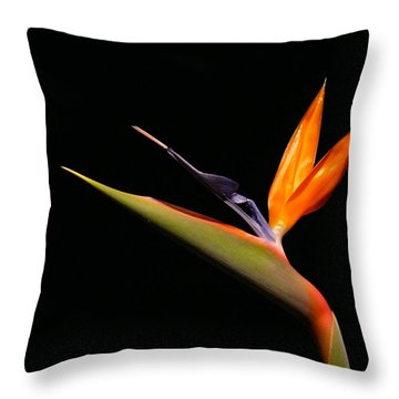 Throw Pillow featuring the photograph I Love You Too by Evelyn Tambour