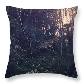 I Realize Throw Pillow by Laurie Search