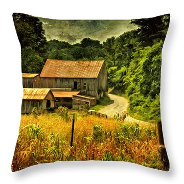 I Remember It Was In The Summer Throw Pillow by Lois Bryan