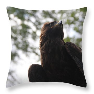 I See.... Throw Pillow