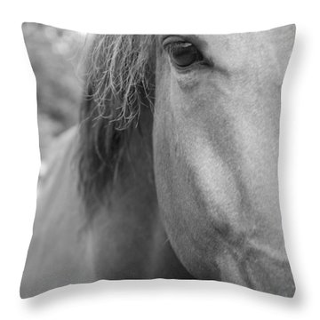 I See You Throw Pillow by Jennifer Ancker