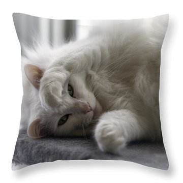 I See You Throw Pillow by Lynn Palmer