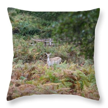 I See You Throw Pillow by Mark Severn