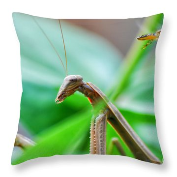Throw Pillow featuring the photograph I See You by Thomas Woolworth