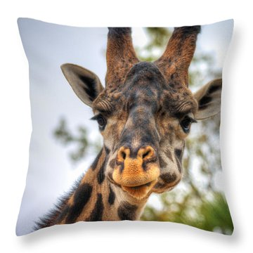 I See You Throw Pillow by Tim Stanley