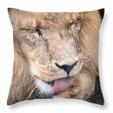 I Take Some Licking Throw Pillow
