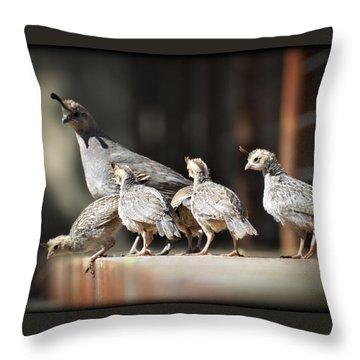I Think I Can Fly  Throw Pillow by Saija  Lehtonen