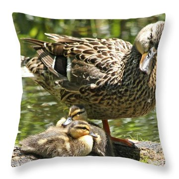 Throw Pillow featuring the photograph I Told You We Would Go Swimming Later by Heather King