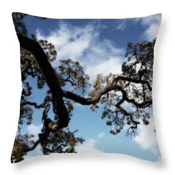 I Touch The Sky Throw Pillow by Laurie Search