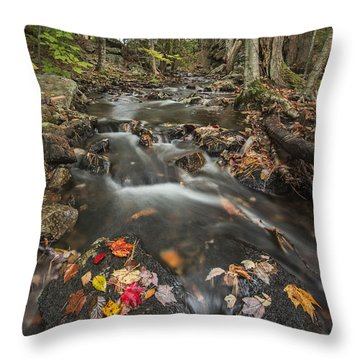 I Want More Throw Pillow by Jon Glaser