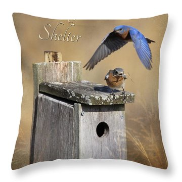 I Will Be Your Shelter Throw Pillow by Lori Deiter