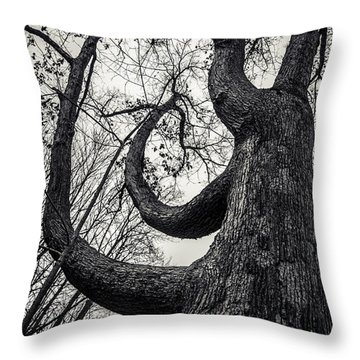 I Will Bend But I Wont Break Throw Pillow by Off The Beaten Path Photography - Andrew Alexander