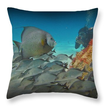 I Will Pose Throw Pillow by John Malone Halifax photogrpher
