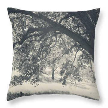 I Would Wrap My Arms Around You Throw Pillow