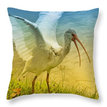 Ibis Talking Throw Pillow by Deborah Benoit