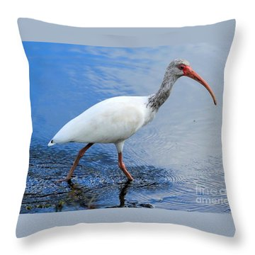 Ibis Visitor Throw Pillow by Carol Groenen
