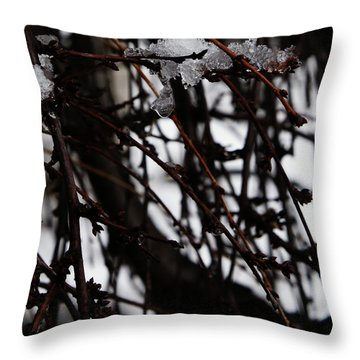 Throw Pillow featuring the photograph Ice 2 by Linda Shafer