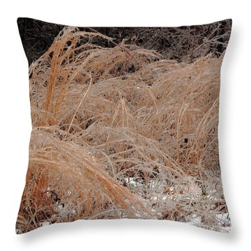 Ice And Dry Grass Throw Pillow