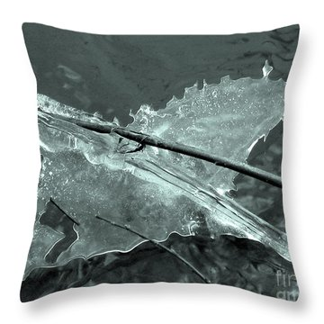 Throw Pillow featuring the photograph Ice-bird On The River by Nina Silver
