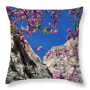 Throw Pillow featuring the photograph Ice Box Canyon In April by Alan Socolik