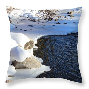 Ice Cold Water Throw Pillow by Fiona Kennard