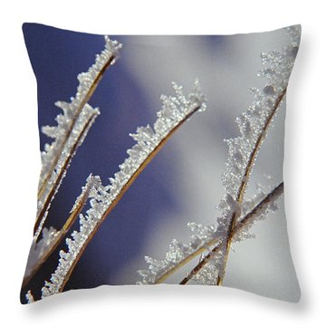 Throw Pillow featuring the photograph Ice Crystals On Fireweed Fairbanks  Alaska By Pat Hathaway 1969 by California Views Mr Pat Hathaway Archives