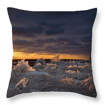 Ice Fields Throw Pillow by James  Meyer