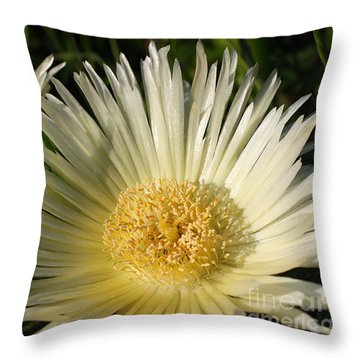 Ice Flowers Throw Pillow
