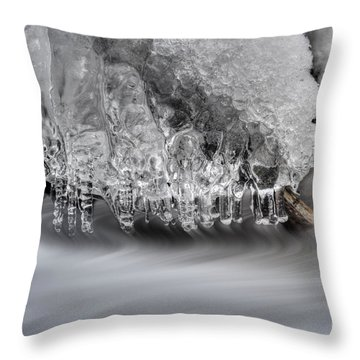 Ice Formation Above Stream Throw Pillow by Dan Friend