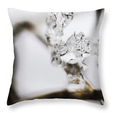 Ice Formation On Vine Throw Pillow