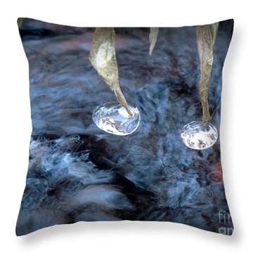 Ice Images Throw Pillow