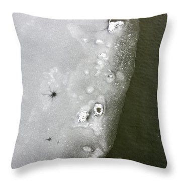 Ice In The River 2 Throw Pillow