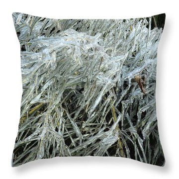 Ice On Bamboo Leaves Throw Pillow