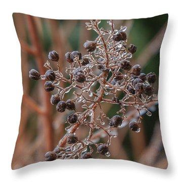 Ice On Berries Throw Pillow