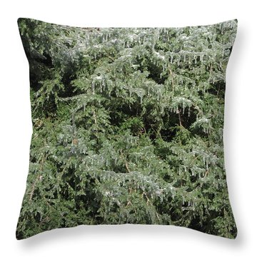 Ice On Eastern Red Cedar Throw Pillow