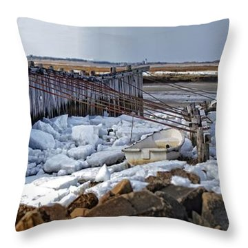 Throw Pillow featuring the photograph Ice On The Marsh by Constantine Gregory