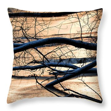 Ice Reflection  Leif Sohlman Throw Pillow