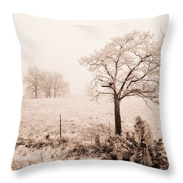 Ice Storm Throw Pillow by Brent Craft