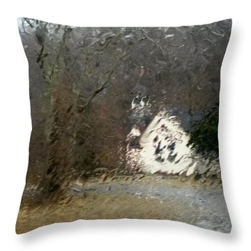 Throw Pillow featuring the photograph Ice Storm by Steven Huszar