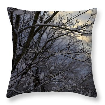 Winter's Embrace Throw Pillow by Jane Eleanor Nicholas