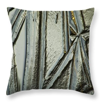 Throw Pillow featuring the photograph Ice by Yulia Kazansky