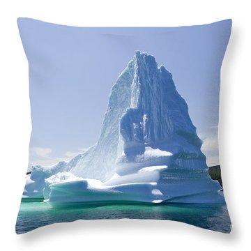 Throw Pillow featuring the photograph Iceberg Canada by Liz Leyden