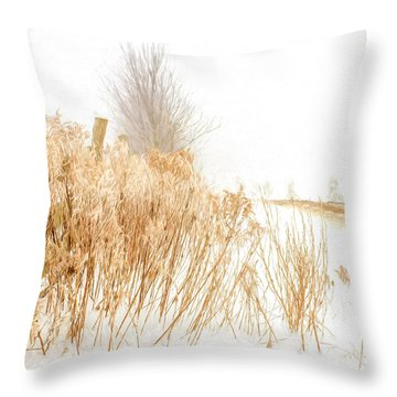 Iced Goldenrod At Fields Edge - Artistic Throw Pillow