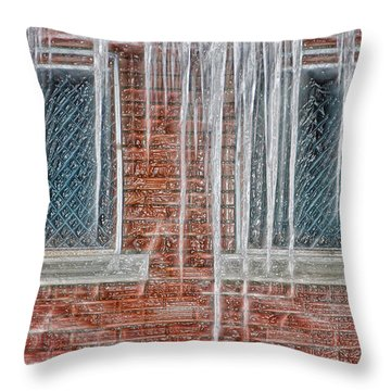 Iced Over Throw Pillow by Steve Ohlsen
