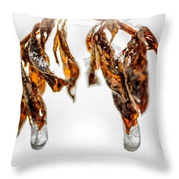 Iced Pokeweed Throw Pillow