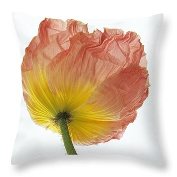 Iceland Poppy 1 Throw Pillow