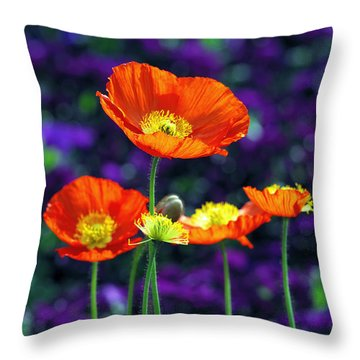 Iceland Poppy Throw Pillow