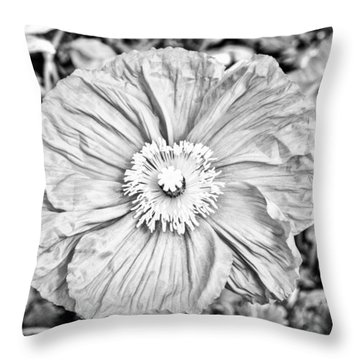 Iceland Poppy In Black And White Throw Pillow