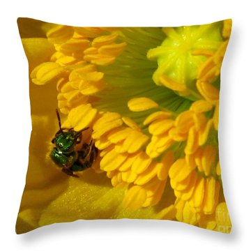 Iceland Poppy Pollination Throw Pillow by J McCombie