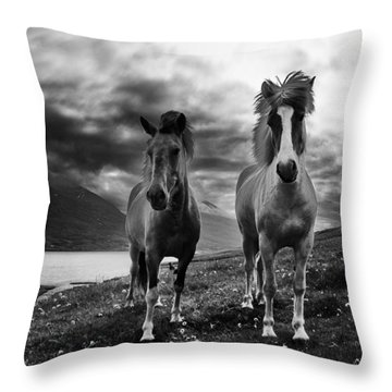 Icelandic Horses Throw Pillow by Frodi Brinks
